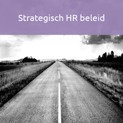 adesso strategisch hr beleid